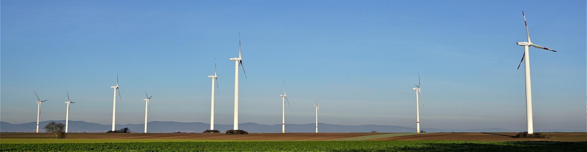 CDU, Grüne, SPD und UWG bringen Klimaneutralität für Bornheim auf den Weg